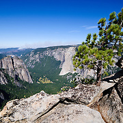 Taft Peak trail, Yosemite National Park, with view over the valley and El Capitan in the background