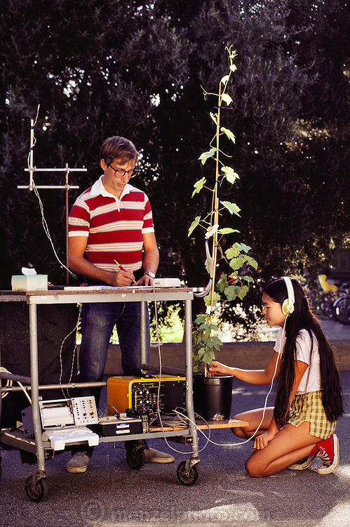 Students listening for ultrasonic acoustic emissions from a grape vine at UC Davis, California. (1986) Viticulture/Oenology MODEL RELEASED. USA.
