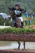 SAMUEL THOMAS II ridden by Oliver Townend at Bramham International Horse Trials 2016 at  at Bramham Park, Bramham, United Kingdom on 11 June 2016. Photo by Mark P Doherty.