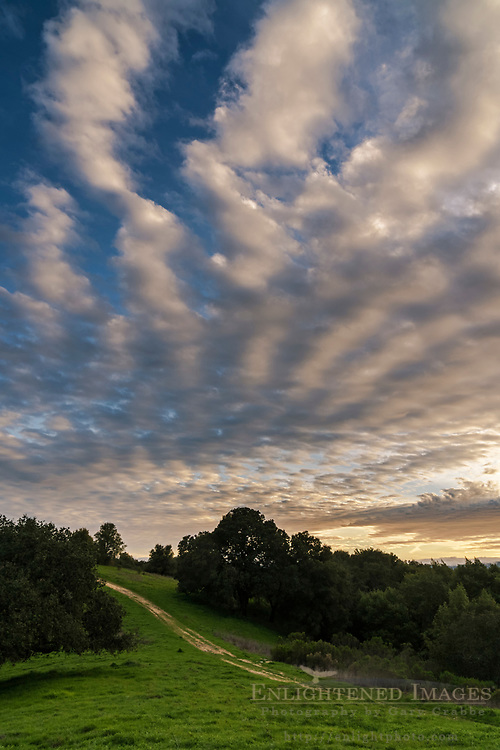 Altocumulus undulatus clouds over the Briones Crest trail, Briones Regional Park, Contra Costa County, California