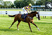 "Contingency Fee ridden by Grace McEntee trained by Phil McEntee in the """"Hands and Heels"""" Apprentice Handicap - Mandatory by-line: Robbie Stephenson/JMP - 27/08/2019 - PR - Bath Racecourse - Bath, England - Race Meeting at Bath Racecourse"