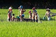 Vietnam images-Children-Mekong delta-Chau Doc. hoàng thế nhiệm