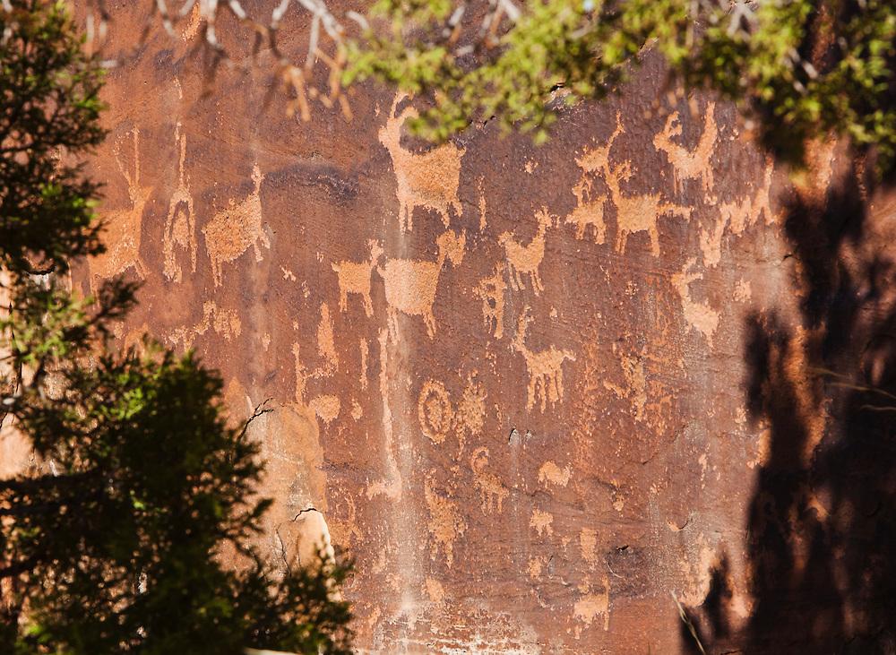 Petroglyphs in Indian Creek Canyon, Utah, USA.
