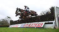 Marc Goldstein riding Leg Iron clears an early fence before winning the J H Builders National Hunt Novices Hurdle at Plumpton Racecourse - 13 Dec 2015