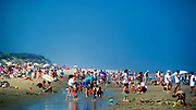 Crowds of vacationers at the beach. Cape Cod National Sea Shore, Massachusetts.