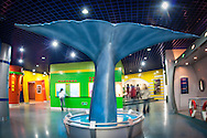 Whale tale on display at the Beijing Museum of Natural fg History