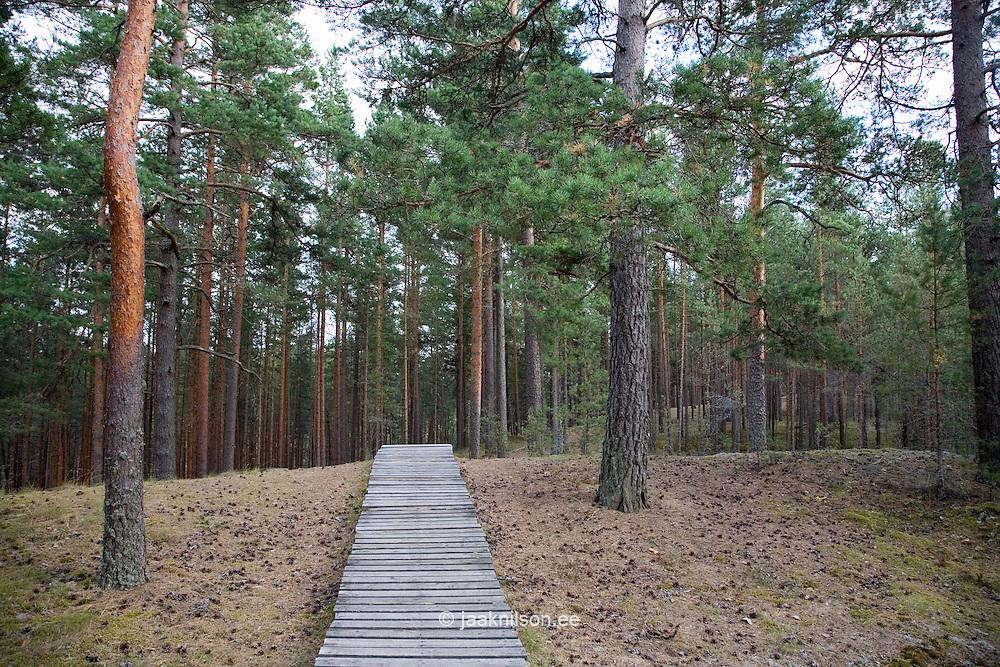 Rannametsa Tornimägi, ..Pärnu-Ikla Recreation Area, Pärnu County, Estonia