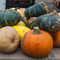 Winter Squash at a farmers market