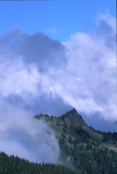 Hurricane Ridge, Olympic National Park, Washington, US