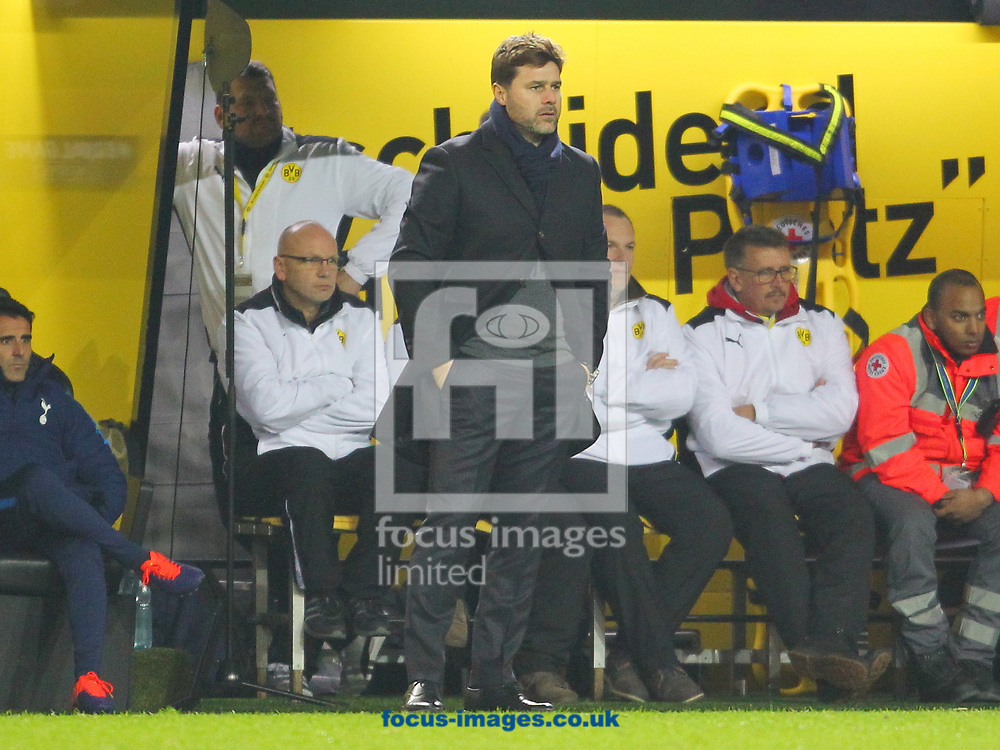 Mauricio Pochettino Manager of Tottenham Hotspur during the UEFA Champions League match at Signal Iduna Park, Dortmund<br /> Picture by Yannis Halas/Focus Images Ltd +353 8725 82019<br /> 21/11/2017