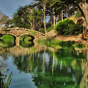 Bridge over water at Golden Gate Park.