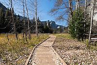 Sentinel Meadow Boardwalk Pathway, Yosemite National Park, California