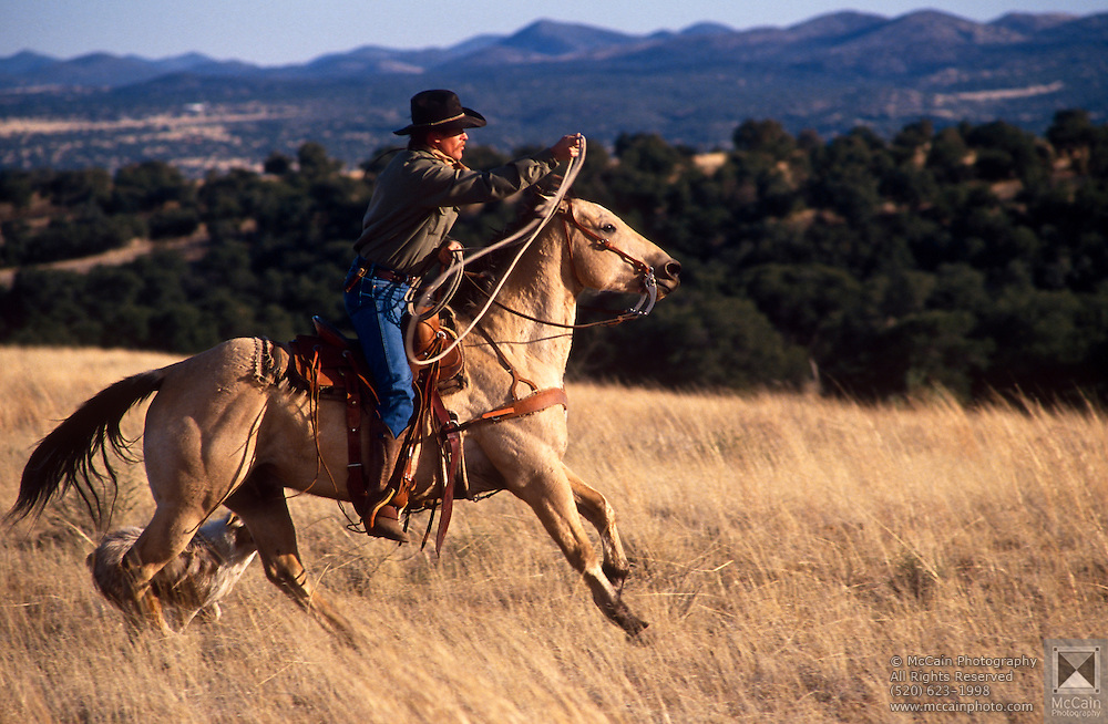 Mark Duncan riding saddle made by Dave and Roy Salge, Vera Earl Ranch, Sonoita, Arizona.©1991 Edward McCain. All rights reserved. McCain Photography, McCain Creative, Inc.