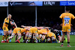 Exeter Chiefs and Wasps contend at the scrum - Mandatory by-line: Ryan Hiscott/JMP - 30/11/2019 - RUGBY - Sandy Park - Exeter, England - Exeter Chiefs v Wasps - Gallagher Premiership Rugby