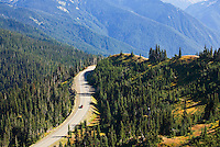 Road to Hurricane Ridge in Olympic National Park, Washington State