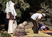 Two men adn three women Muslims at prayer on a straw mat in a private garden in Maadi, Egypt