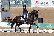 Danielle Heijkoop - Siro<br /> FEI European Championships 2013<br /> © DigiShots