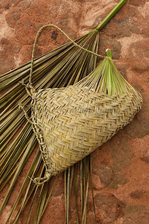 Single Palm leaf used to make basket<br /> Macushi people<br /> Amerindian village<br /> Savannah, Rupununi<br /> GUYANA<br /> South America
