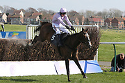 BORN SURVIVOR (5) ridden by Harry Skelton and trained by Dan Skelton winning The Listed (Class 1) Hillhouse Quarry Handicap Steeple Chase over 2m 4f (£50,000) durng the Scottish Grand National, Ladies day at Ayr Racecourse, Ayr, Scotland on 12 April 2019.