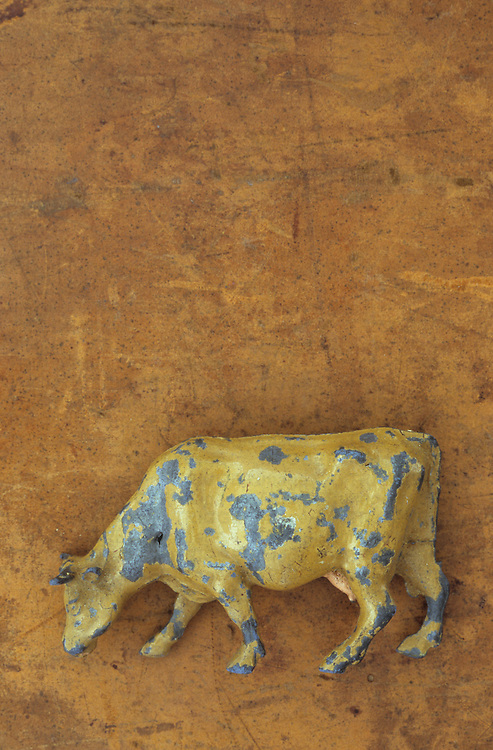 Scratched lead model of grazing golden cow lying on scuffed leather