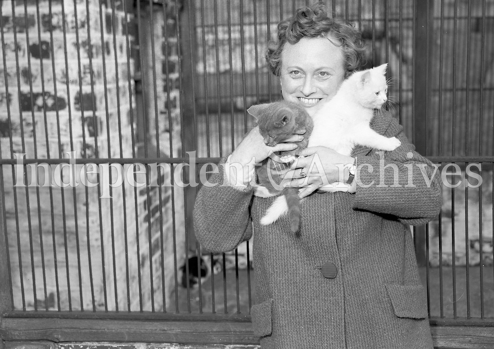 Ms Nora Lever PRO of the DSPCA. April 29 1964. <br /> (Part of the Independent Ireland Newspapers/NLI Collection)