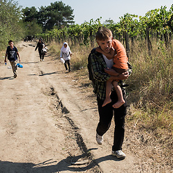 A refugee family makes their way to the Macedonian reception center near the town of Gevgelija on August 25, 2015.  After crossing into Macedonia the refugees travel north to border with Serbia where they will continue their journey to other European states.