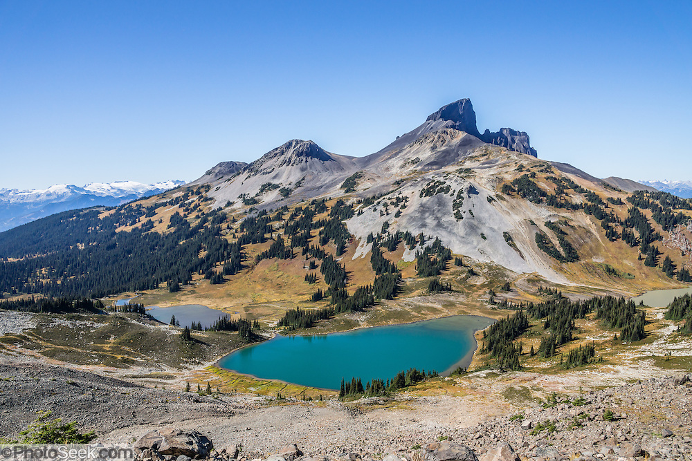 The volcanic pinnacle of Black Tusk rises above Black Tusk Lake (foreground) and Mimulus Lake, seen from Panorama Ridge Trail. The Black Tusk (2319 m or 7608 ft) is a remnant of an extinct andesitic stratovolcano which formed 1.3-1.1 million years ago: after long glacial erosion, renewed volcanism 170,000 years ago made the lava flow and dome forming the tooth-shaped summit. Panorama Ridge is 17 miles round trip with 5100 feet gain from Rubble Creek parking lot (or 6 miles/10k RT with 2066 ft/630m gain from either Taylor Meadows or Garibaldi Lake Backcountry Campground). A hiking loop to Garibaldi Lake via Taylor Meadows Campground is 11 miles (18k) round trip, with 3010 ft (850m) gain. Garibaldi Provincial Park is east of the Sea to Sky Highway (Route 99) between Squamish and Whistler in the Coast Range, British Columbia, Canada.