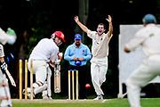 SPORT: SACA Grade Cricket.  Adelaide vs Woodville at Glandore.  Woodville's Chad Sayers bowls out Jaik Mickelburgh.