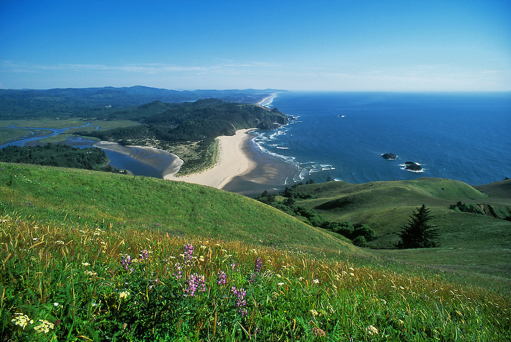 View of the Oregon coast looking south from The Nature Conservancy's Cascade Head Natural Area.