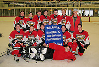 Hockey team wins the championship for the Bantam Division of the Lions Gate League 2004