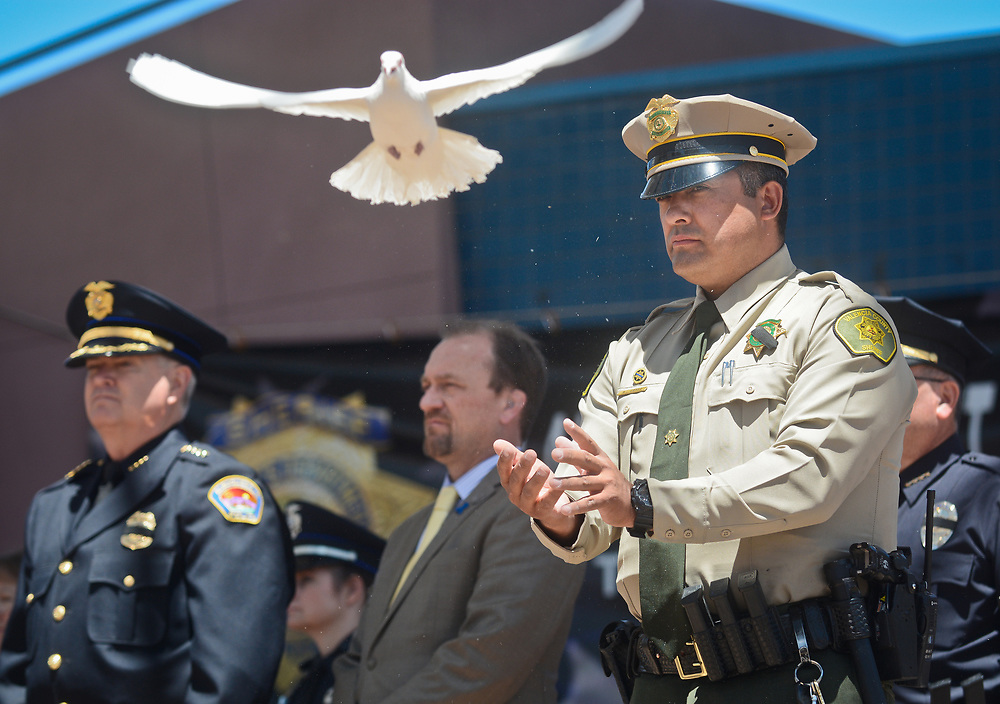 mkb050217d/metro/Marla Brose -- Valencia County Deputy Bert Lopez release doves one-by-one as the names of over 35 New Mexico officers killed in the line-of-duty were read during the annual Law Enforcement Memorial Service at Civic Plaza in Albuquerque, N.M., May 2, 2017. (Marla Brose/Albuquerque Journal)