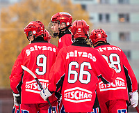 2018-11-11 | Jönköping, Sweden: Jönköping Bandy celebrates during the game between Jönköping Bandy IF and Åtvidaberg BK at Råslätts IP ( Photo by: Marcus Vilson | Swe Press Photo )<br /> <br /> Keywords: Råslätts IP, Jönköping, Bandy, Div. 1 Södra, Jönköping Bandy IF, Åtvidaberg BK