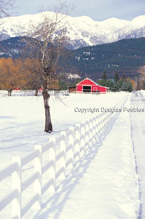 Bar, Flathead Valley, Montana<br />