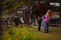 Young girl walking with a horse on a grassy path, Kodiak, Alaska.