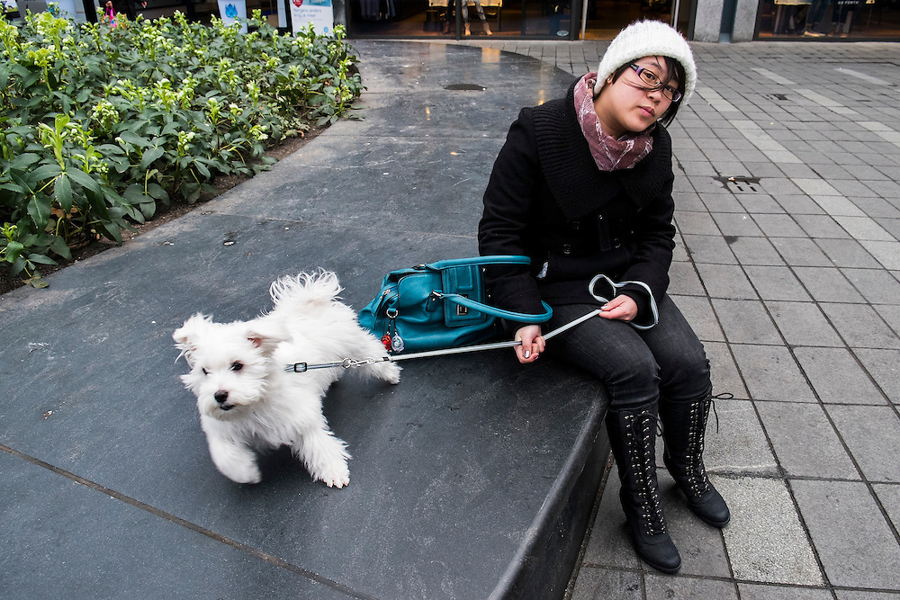 Nederland,  Rotterdam, 2 febr 2014<br /> Jonge vrouw en wit hondje<br /> Foto: Michiel Wijnbergh