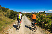 Cyclists on the Alps to Ocean Cycle Trail in the Southern Alps, Canterbury, South Island, New Zealand