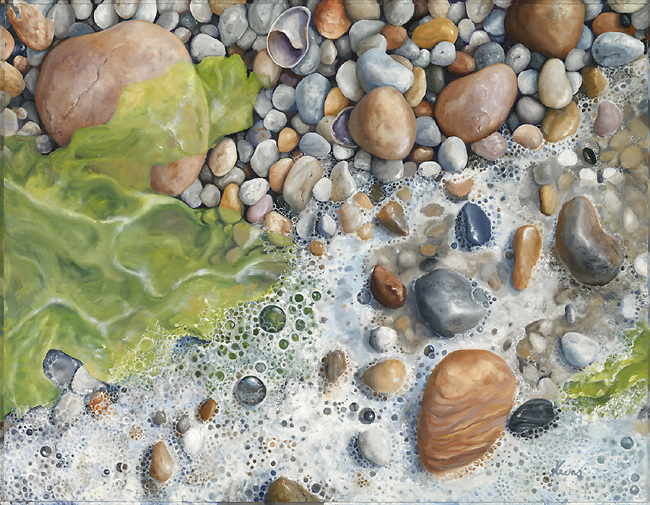 Tiny white pebbles peek out from sea foam and seaweed.  Vibrant green sea lettuce perfectly complements the warm white pebbles and puts you there on a quiet beach.<br /> <br /> Original oil on panel available 22 x 28<br /> Print Pricing, see Flight C