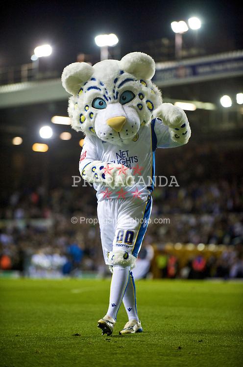 Image result for leeds united mascot