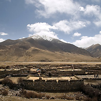 The small village of Narme in the country side of Tibet, in the Lhasa river valley, is one of the red spots of the Kashin-Beck Disease, in the Lhasa river valley. Tibet, China. April 14, 2007. Photo: Bernardo De Niz
