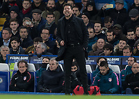 Football - 2017 / 2018 UEFA Champions League - Group C: Chelsea vs. Atletico Madrid<br /> <br /> Diego Simeone, Manager of Atletico Madrid, encourages his team on at Stamford Bridge.<br /> <br /> COLORSPORT/DANIEL BEARHAM