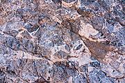 Rock pattern. Fall Canyon Narrows. Death Valley National Park, California, USA.