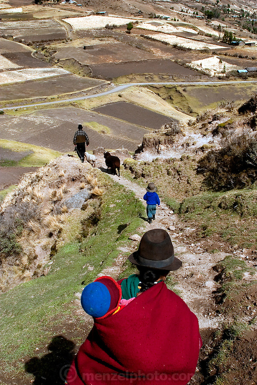 The Ayme family on their way to the weekly market in Simiatug, Ecuador. The Ayme family of Tingo, Ecuador, a village in the central Andes, is one of the thirty families featured, with a weeks' worth of food, in the book Hungry Planet: What the World Eats. (Ermelinda Ayme is also one of the 80 people featured with one day's food in the book What I Eat: Around the World in 80 Diets.) The family consists of Ermelinda Ayme Sichigalo, 37, Orlando Ayme, 35, and their children: Livia, 15, Moises, 11, Jessica, 10, Natalie, 8, Alvarito, 4, Mauricio, 30 months, and Orlando hijo (Junior), 9 months. Lucia, 5, lives with her grandparents to help them out. (Please refer to Hungry Planet book p. 106-107 for a family portrait [Image number ECU04.0001.xxf1rw] including a weeks' worth of food, and the family's detailed food list with total cost.)