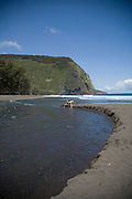 Waipio Valley, Island of Hawaii