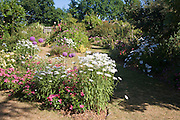 Flower garden display at Peter Beales roses nursery near Wymondham, Norfolk, England