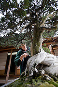 Valentin Brose works on an 800-year-old juniper bonsai tree at Shunkaen in Tokyo, Japan on Monday Mar. 15 2010..Photographer: Robert Gilhooly