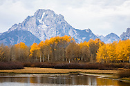 0453 Oxbow Bend - Wyoming: Oxbow Bend is the gathering place of wildlife for the Grand Teton National Park. The mirror-like water reflection is the reason photographers flock to this area.