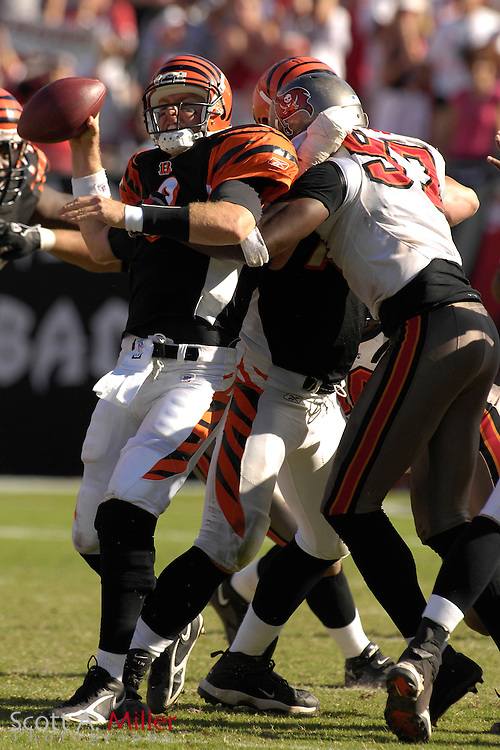 Oct. 15, 2006; Tampa, FL, USA;  Tampa Bay Buccaneers defender (97) Simeon Rice sacks Cincinnati Bengals quarterback (9) Carson Palmer in the closing seconds of the Bucs 14-13 win at Raymond James Stadium. ...©2006 Scott A. Miller