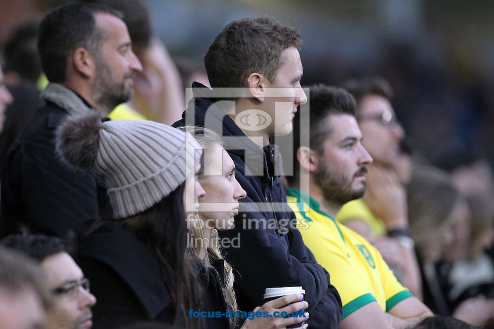 The traveling Norwich fans look dejected after their side concedes it&rsquo;s 3rd goal during the Sky Bet Championship match at the American Express Community Stadium, Brighton and Hove<br /> Picture by Paul Chesterton/Focus Images Ltd +44 7904 640267<br /> 29/10/2016