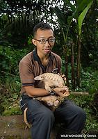 A captive Sunda pangolin (Manis javanica) held by zookeeper Ade Kurniawan (model released) at  Night Safari, Singapore. © 2016 Jak Wonderly / wildwondersofchina.com