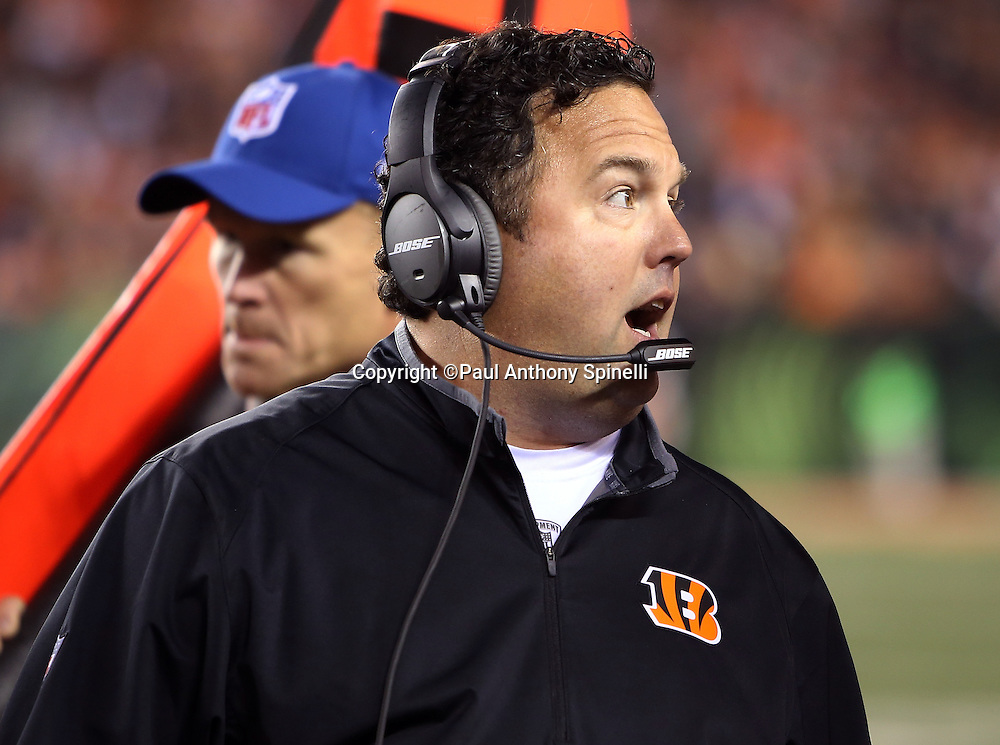 Cincinnati Bengals defensive coordinator Paul Guenther yells out to the team on the sideline during the 2015 week 10 regular season NFL football game against the Houston Texans on Monday, Nov. 16, 2015 in Cincinnati. The Texans won the game 10-6. (©Paul Anthony Spinelli)